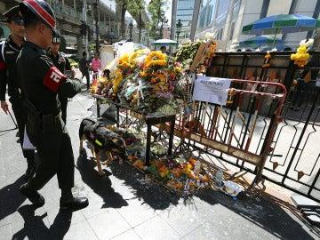 Un policía militar tailandés patrulla con el perro