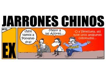 Jarrones chinos (30-01-2016)