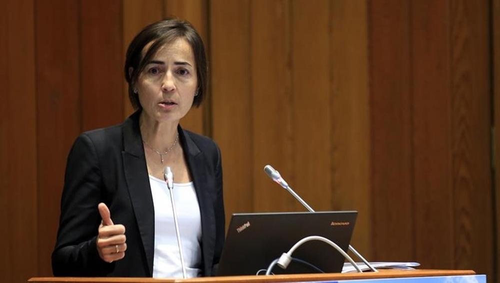 La exdirectora general de Tráfico, María Seguí