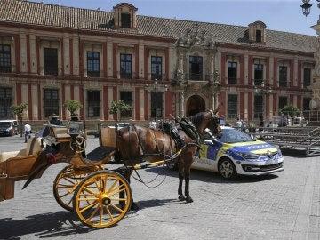 Coche de caballos en Sevilla