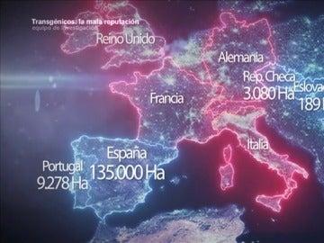 Frame 88.709088 de: España, el granero transgénico de Europa donde el maíz aragonés es el rey