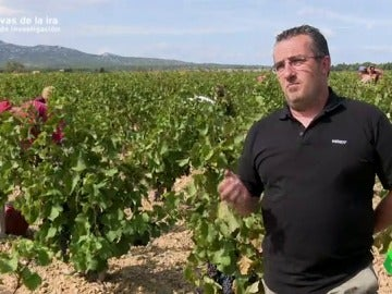 """Frame 35.79063 de: Un viticultor francés apoya los ataques y el boicot al vino español: """"Entra demasiado para lo que se consume en Francia"""""""