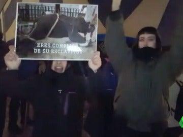 Frame 0.675645 de: Cinco activistas boicotean el show de un circo en Madrid exigiendo el cese de espectáculos con animales