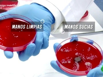 Frame 168.900999 de: BACTERIAS ESCONDIDAS