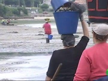 La Xunta no materializa el plan de saneamiento de la Ría de Pontevedra y las mariscadoras no pueden trabajar ni cobrar el paro