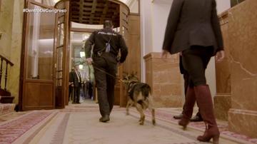 Seguridad en Congreso de los Diputados