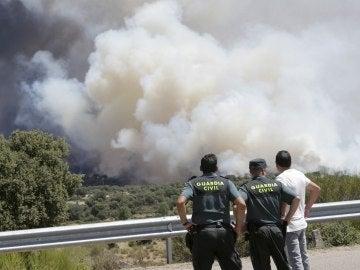 Agentes observan el incendio forestal en la localidad zamorana de Pino del Oro