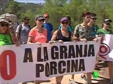 Protesta contra una granja porcina