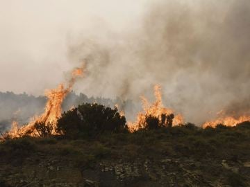 Incendio en Encinedo, León