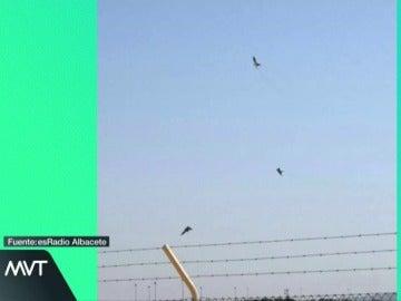 Primeras imágenes del accidente mortal de un caza del Ejército del Aire