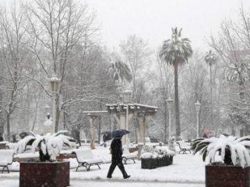 Vista de un parque en la capital vizcaína, una ciudad paralizada tras amanecer cubierta de nieve