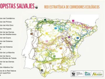 Mapa de los corredores ecológico elaborado por WWF