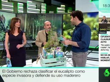 El consultor medioambiental Miguel Aguado