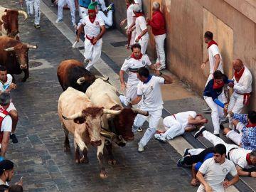 Los toros de la ganadería gaditana de Cebada Gago al final de la cuesta de Santo Domingo