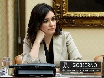 La exministra de Sanidad, Consumo y Bienestar Social, Carmen Montón