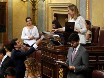 Votación sobre Rosa María Mateo en el Congreso