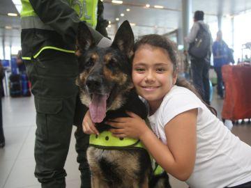 'Sombra', perra policía colombiana experta en detectar droga