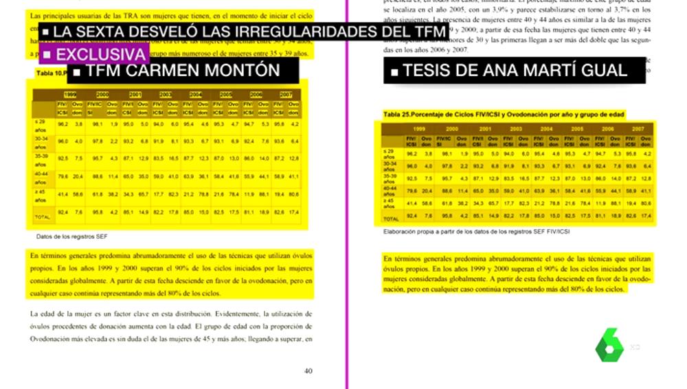 TFM de Montón