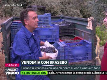 Reportaje de Roberto Brasero sobre la vendimia