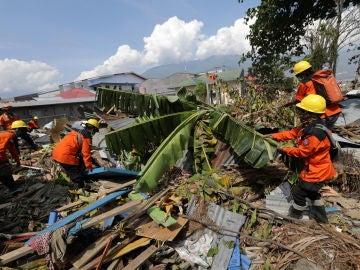 Los trabajadores de la Agencia Nacional de Búsqueda y Rescate de Indonesia buscan cuerpos bajo las ruinas