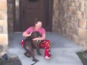 Imagen de la conmovedora reacción de una joven al saber que sus padres adoptaron al perro que ella cuidaba en un refugio