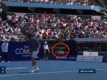 El truco de Tomic