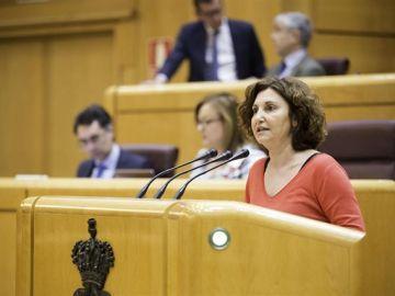 La portavoz de Unidos Podemos en el Senado, Pilar Garrido
