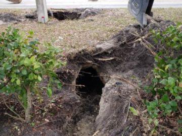 El túnel investigado por el FBI en Pembroke Pines, Florida
