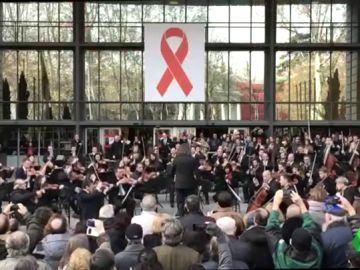 Los músicos salen a la calle para reivindicar sus derechos: muchas de sus lesiones no son reconocidas como enfermedades laborales