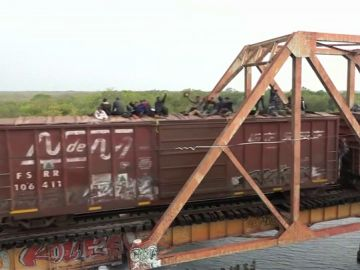 Migrantes en el tren conocido como 'La Bestia'