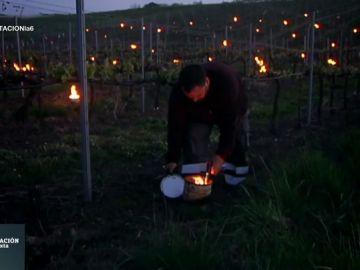Candelas, las pequeñas hogueras que abrigan del frío nocturno a los viñedos