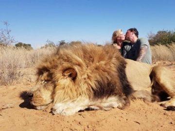 Matrimonio canadiense se besa al lado de un león abatido