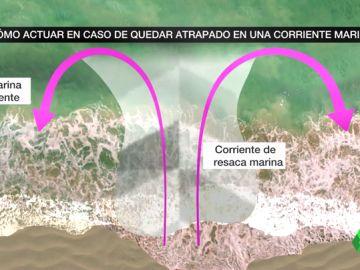 Cómo actuar si vemos que alguien se está ahogando en el agua