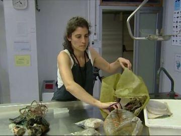 Científica sacando basura del fondo del mar
