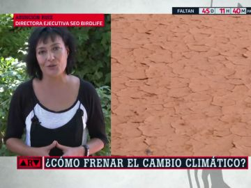"""Asunción Ruiz: """"Las políticas ambientales no son un lujo ni un capricho"""""""
