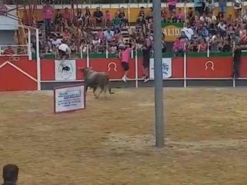 Imagen del toro que se ha escapado de la plaza en Girona y ha herido a 17 personas