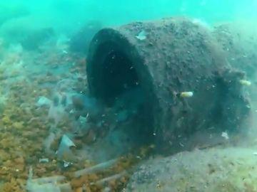 """""""Del retrete de las casas al mar"""": esto es lo que ha provocado la falta de depuración del agua en Nerja"""