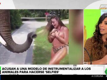 Critican a una modelo de playboy por utilizar animales para ganar seguidores en redes sociales