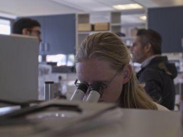 Un complejo tecnológico, granjas de salmones y un centro de ciencia marina: así se fomenta en las Highlands el emprendimiento y el trabajo cualificado