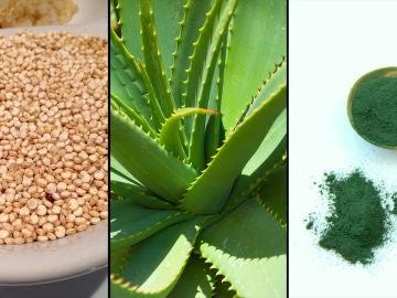 Quinoa, aloe vera y espirulina