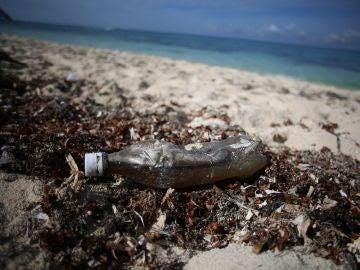 Desechos plásticos en una playa del Caribe mexicano