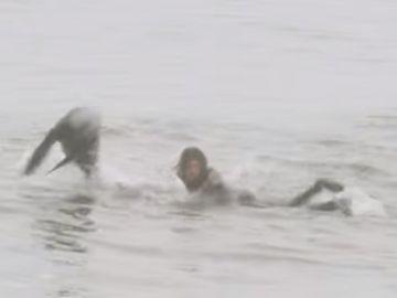 Craig Anderson sorprendido por una foca mientras surfeaba