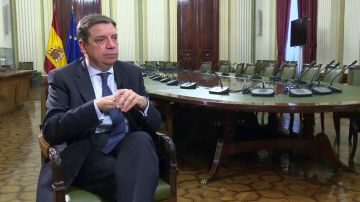 """El plan del ministro Luis Planas para solucionar el problema de los agricultores en España: """"Hay que reequilibrar la cadena"""""""