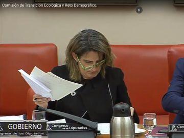 """La imagen más """"austera"""" de Teresa Ribera con unas gafas sin una patilla en la Comisión de Transición Ecológica"""