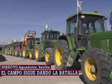Tractorada de agricultores en Aguadulce, Sevilla
