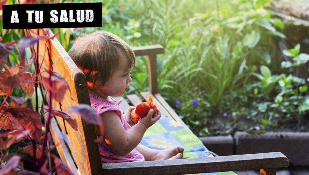 Bebé comiendo fruta