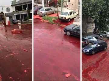 Morón, inundada de sangre de un matadero