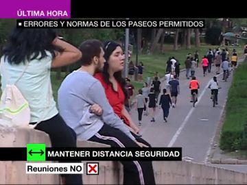 ¿Qué no se puede hacer durante los paseos?: los errores más repetidos en los primeros días de salidas de adultos
