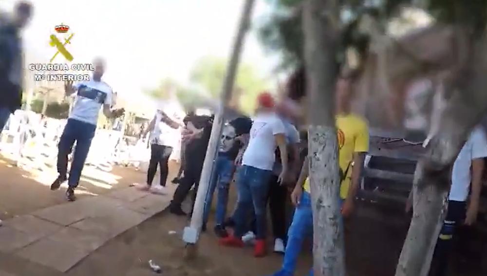 La Guardia Civil sorprende a 120 personas reunidas por una pelea de gallos