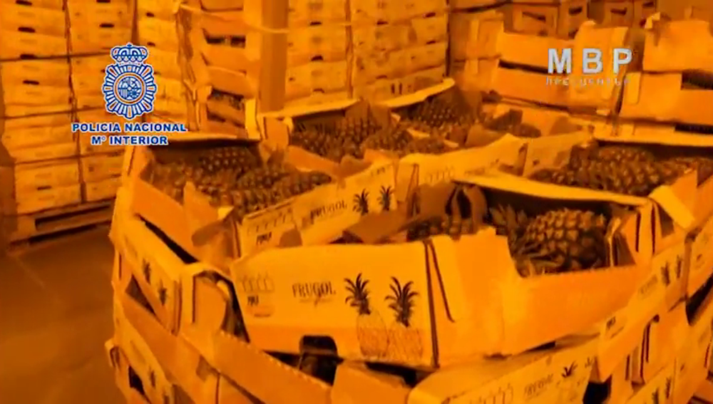 Incautan una tonelada de cocaína impregnada en el cartón de cajas de fruta